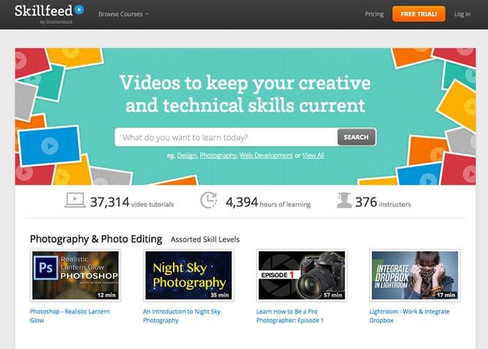 SkillFeed: Learn web design