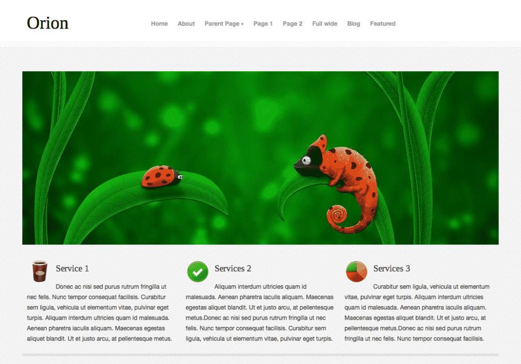 Orion free responsive WordPress theme