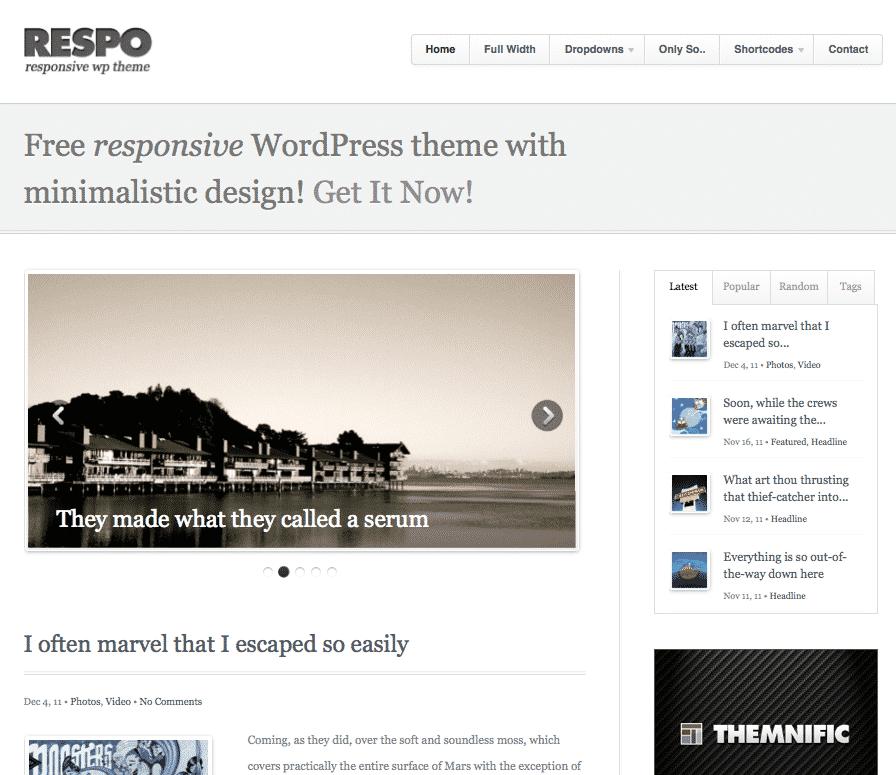 Respo Free responsive WordPress Theme
