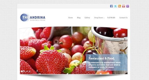 Free WordPress Themes Andrina