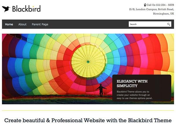 Free WordPress Themes Blackbird