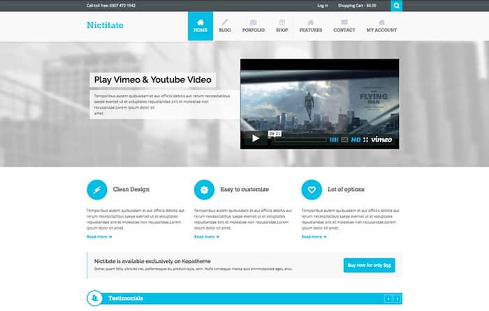 Nictitate: Best Free WordPress Themes 2014
