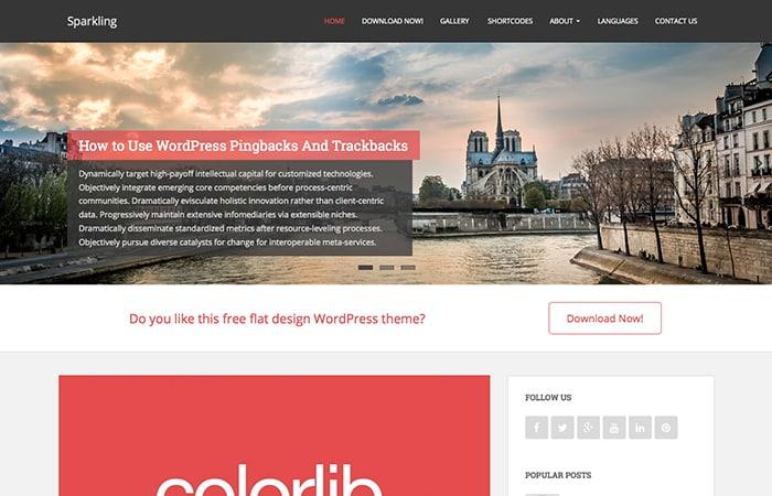 Sparkling: Best Free WordPress Themes 2014