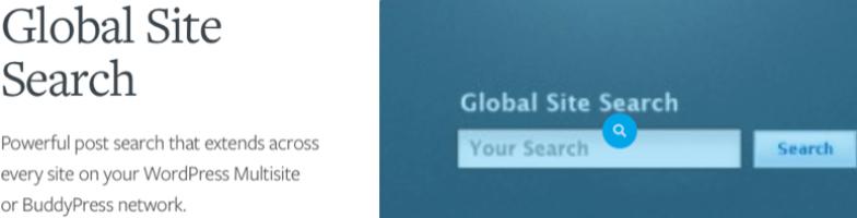 global site search wordpress plugin